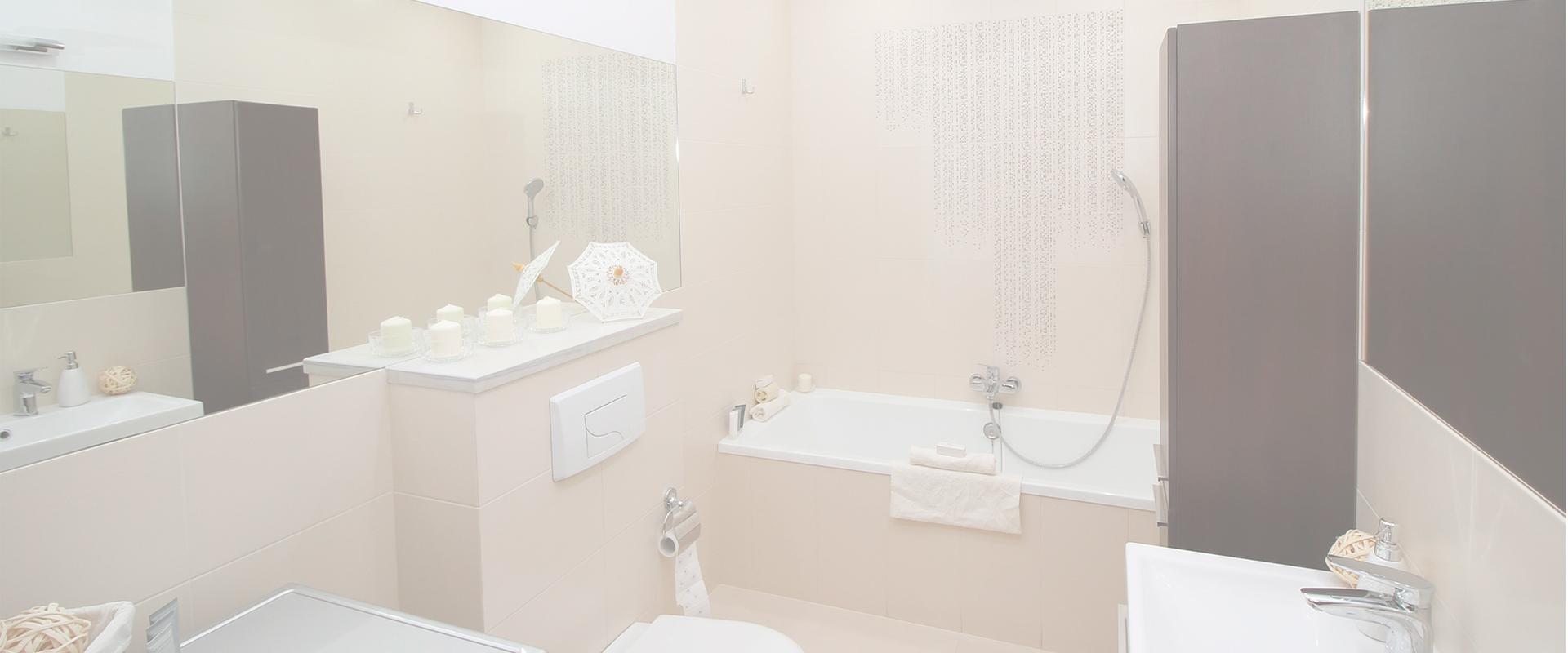 reformar el baño profesionales madrid